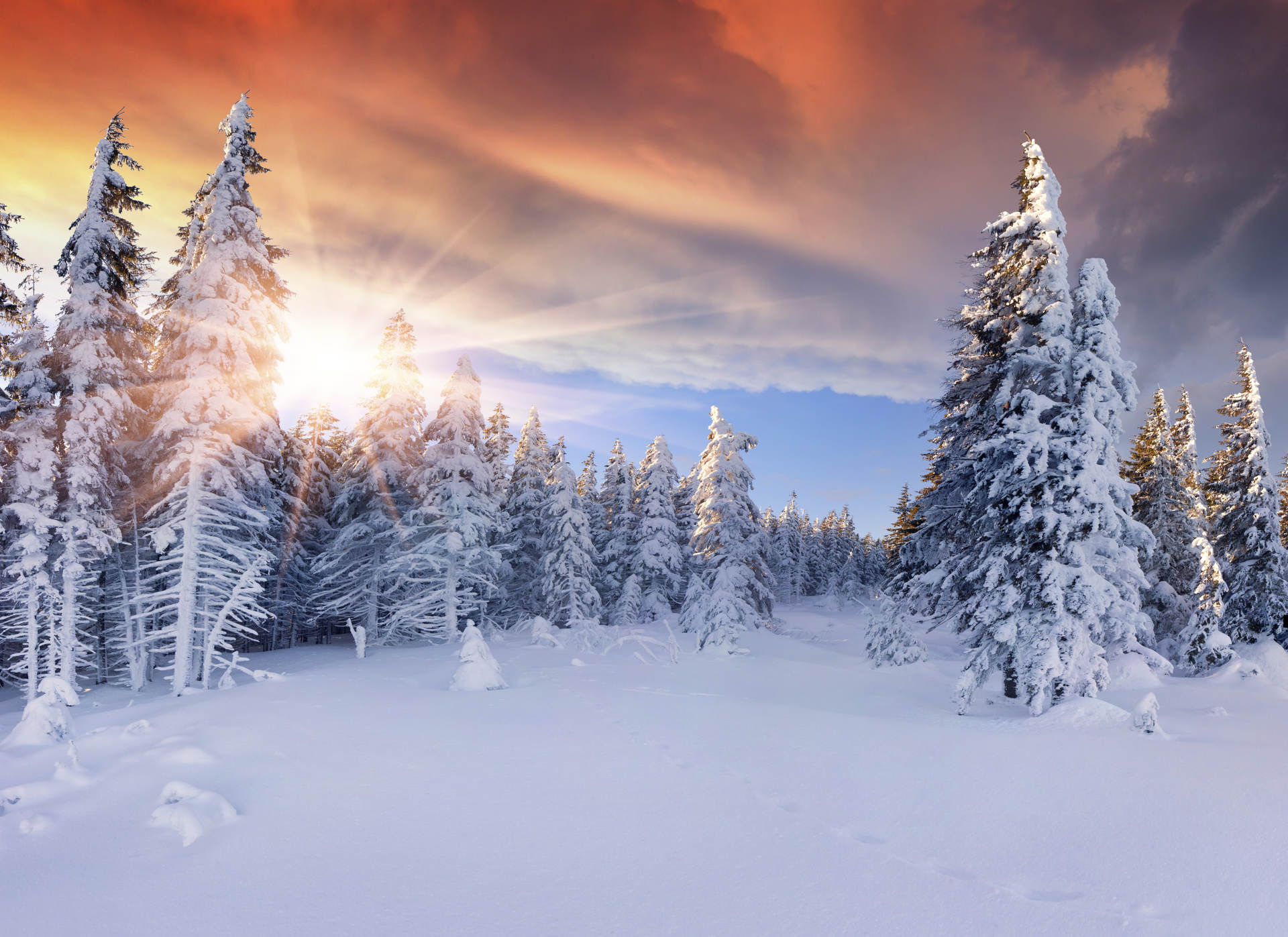 Beautiful winter sunrise in the mountains. Dramatic red sky